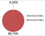 Use of antibiotics in animals and people – resistance transfer