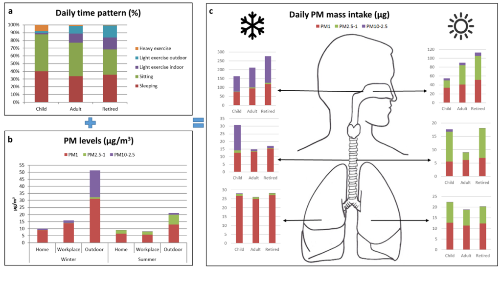 Fig. 1. Daily activity pattern for the three population groups (a), PM levels in every environment (b), and PM deposited mass in every region of the respiratory tract (c).