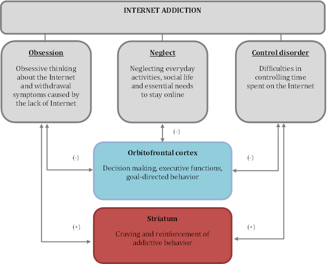Fig. 1. This figure shows how the three aspects of Internet addiction is related to the gray matter volume of prefrontal (orbitofrontal cortex) and subcortical regions of the brain reward system in a large sample of habitual Internet user females.