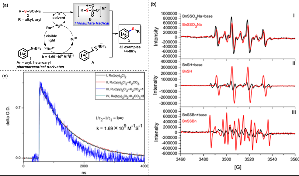 Fig. 1. (a) The bioinspired photocatalyzed sulfide synthesis involving organic thiosulfate salt and aryl diazonium salt (b) Sulfur radical from different sources observed by electron paramagnetic resonance experiments (c) Transient absorption spectrum studies--the kinetic study of the decay at 370 nm.