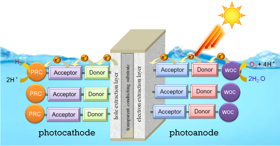 Holding On To The Electrons In Artificial Photosynthesis Atlas Of