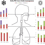 What do we breathe? A study of particular matter exposure and deposition in the human respiratory tract