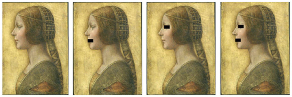 Fig. 2. By masking different parts of La Principessa's face and by systematically blurring the image, we found that the illusion would be mainly attributable to the mouth area.