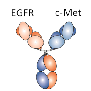 Fig1-Chiu