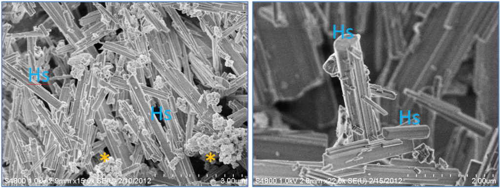 "Fig.2. Nano- and Micro-scale features of discovered new synthesis for high-aspect ratio structure (HARS) biocomposites.  Both panels show scanning electron microscopy images.  Left panel= HARS generated from copper nanoparticles (CuNPs) and right panel= HARS generated from Copper sulfate.  Scale bars in bottom right of each figure are 3 and 2 microns, with each gradation= 300 and 200 nanometers for left and right panels, respectively.  The ""*"" symbol indicates clumped CuNPs, and ""Hs"" indicates example HARS.  (Modified from the original publication by Cotton Kelly et al. in JOVE 2015)."