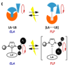 Control the frustration between molecular pairs with  external stimuli-responsive motions