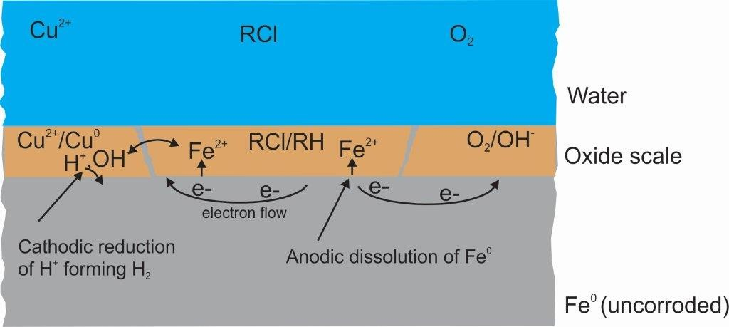 Fig. 1, Overview of a Fe0/H2O system labelling key features relevant for contaminant removal. Corrosion begins at a location where Fe2+ is generated (anode). Fe2+ goes into the aqueous solution and two electrons, left behind migrate to another location (cathode) where they are taken up by H+ from water dissociation (H2O  H+ + OH-). The resulting hydroxide ions (OH-) react with the Fe2+ to initially form hydrous iron oxides (Fe(OH)2) that precipitate. Depending from the environmental conditions Fe(OH)2 is oxidized and transformed to various FeII/FeIII oxides that form the oxide scale. The dynamic process of Fe(OH)2 formation and transformation continues ideally until Fe0 is depleted.