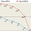 A novel method of stool DNA analysis for colorectal cancer diagnosis