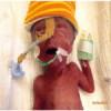 Preterm birth does not impair parenting behaviour