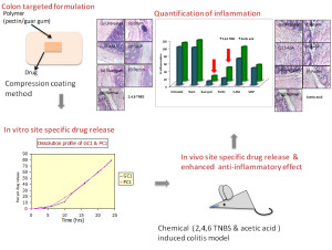 Schematics of making formulation and its in vitro and in vivo evaluation