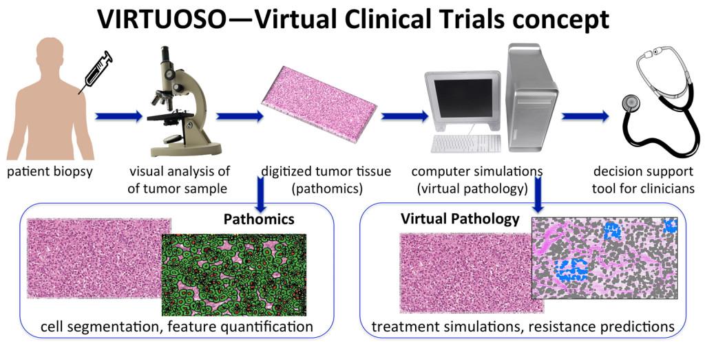 Fig. 1. VIRTUOSO - virtual clinical trials concept