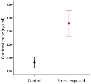 Fig.1. Stress-exposed females showed higher corticosterone concentrations in blood than controls (p=0.009).