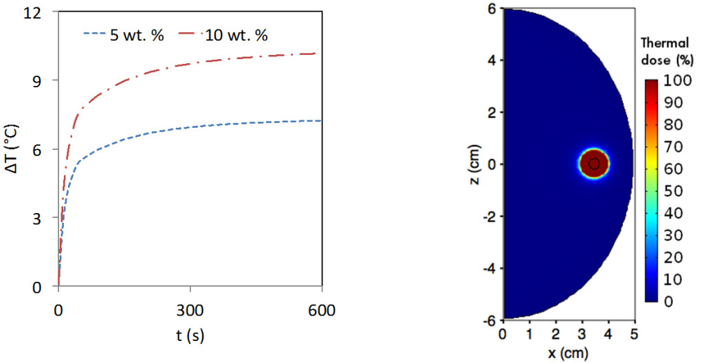 Fig. 2. (a) Temperature as a function of time and (b) Thermal dose coverage when breast tissue is subjected to heating by the nanocomposite structures for 5 mins.