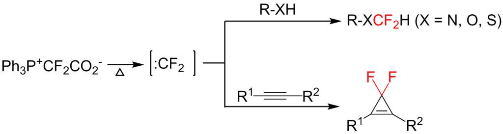 Fig1-Xiao