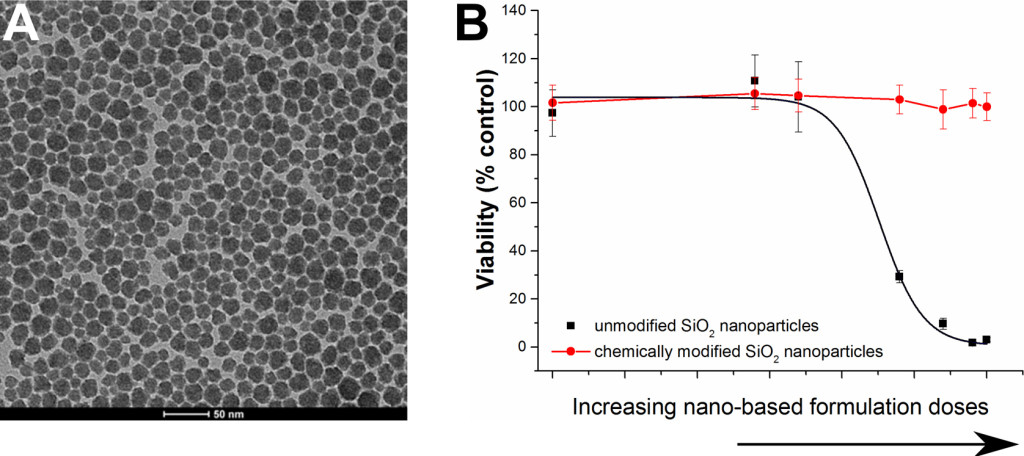 Fig. 2. (A) Representative TEM image of nanostructured SiO2 consolidants; (B) toxicity of SiO2 nanoparticle-containing consolidants.