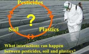 Potential interactions between pesticides, soil and plastics.