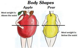 Fig. 1. The difference between the apple shape and the pear shape in obesity. The apple shape results from fat deposition more above the waist and the pear shape more below the waist. The apple shape involves visceral (belly) fat, a deeper more serious form of obesity and associated with more vascular diseases like strokes and heart attacks. Fat below the waist involves more superficial fat and is a less serious form of obesity.