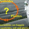 Plastics in horticultural soils. Does it matters?
