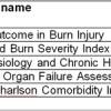 Revised Baux score and updated Charlson comorbidity index associated with mortality in burn patients