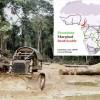 Africa's roads to ruin?