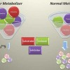 Can pharmacogenetics testing help reduce psychiatric suffering?