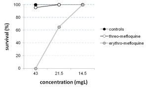 Fig. 1. Survival. The survival rate for both drugs is presented in dependence of the concentration.