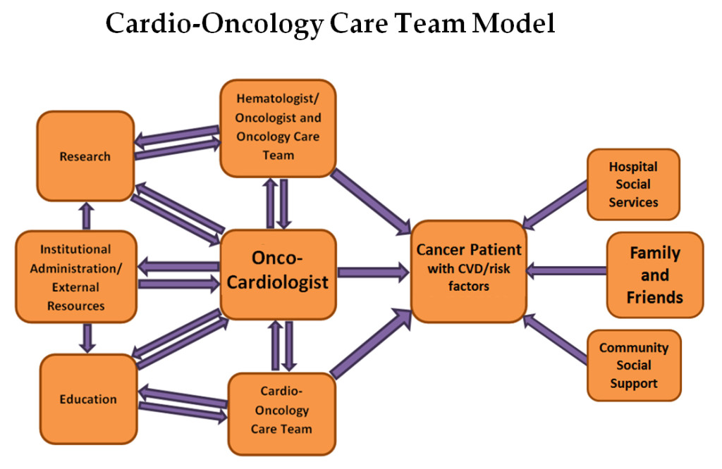 Cardio-Oncology Care Team Model. The various responsibilities of an onco-cardiologist with a constant feedback and interactive process, with the ultimate goal of effective patient care achieved through an integrative process. CVD = cardiovascular disease