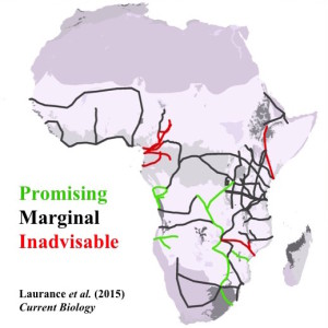 An assessment of Africa's proposed and ongoing 'development corridors'.