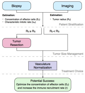 Theory-driven treatment proposal for non-invasive tumors.