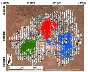 Fig. 2. An aerial photo of the study site with locations of ground survey quadrats in grey-scale colors reflecting their refuge rank (black being the highest) and three examples of lizard tracks.