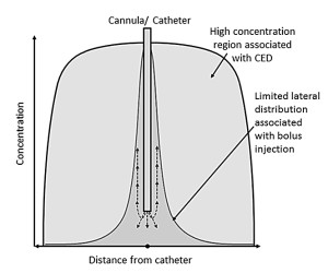 Fig. 1. Graphic depiction comparing the distribution associated with Convection-Enhanced Delivery (CED) and bolus injection (reproduced and modified from (Lam et al. 2011). Note that the region of high concentration has spread laterally a much larger distance from the catheter than simply injecting a bolus which is the signature of CED.