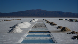 Fig. 1. Salinas Grandes (Argentina). Credit: Alicia Nijdam-Jones.