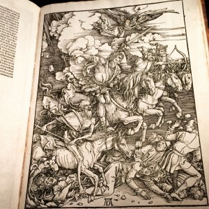 A recent conference in Oxford brought Boris Sobolev to an exhibition showing Dürer's Four Horsemen, among other rarities. The connection between images on the print and the reality of the hip attack did not escape him. The first horseman, Conquest, the trauma itself, comes to defeat the frail through pain, immobility and suffering. The second horseman, War, brings the battle of competing needs to our health care, making hospitals prioritize one urgent procedure over another. The horseman with scales comes to dispense access to care. And the rider of a pale horse comes to harvest death toll among the injured.
