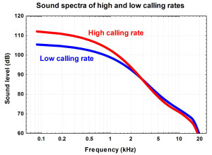 Fig. 1. The spectral levels of harp seal underwater calls at high and low calling rates. The seals do not use more high frequency calls at high calling rates.