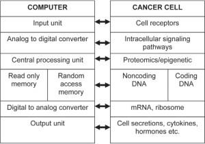 Fig. 1. Similarities between computer system and human cell.