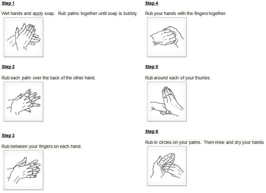 Six steps to effective hand hygiene.