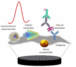 Hybrid 2D nanomaterials based electrochemical immunosensing strategies for clinical biomarkers determination.