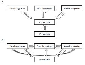Figure 2. (A) Person Hub Theory, (B) Distributed Theory.
