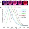 High-level incorporation of silver in gold nanoclusters for detecting hydrogen peroxide and herbicide