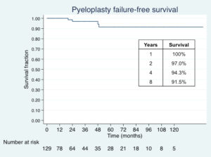 Fig. 1. Kaplan Meier survival of successful robot-assisted laparoscopic pyeloplasty over twelve years of follow-up.