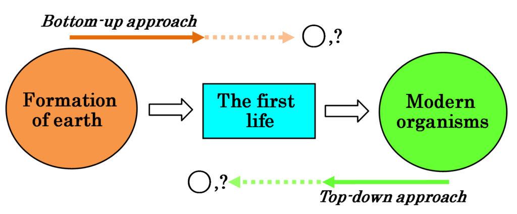 Fig1-Ikehara