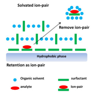 Fig. 1. Modeling of reversed-phase ion-pair liquid chromatography, where an analyte is retained by ion-pair formation; then, the paired-ion is removed by solvation.
