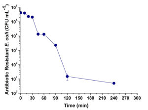 Fig. 2. Inactivation of antibiotic resistant Escherichia coli strain during disinfection by UV/H2O2 process.