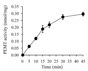 Fig. 1. Time dependent PEMT assay. PEMT activity is linear as a function of time.