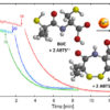Cupric ions enhance the radical scavenging capacity of cysteine-derived antioxidants