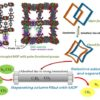 An entangled flexible MOF for capture of CO2 and store/ separation of (C1-C3) hydrocarbons