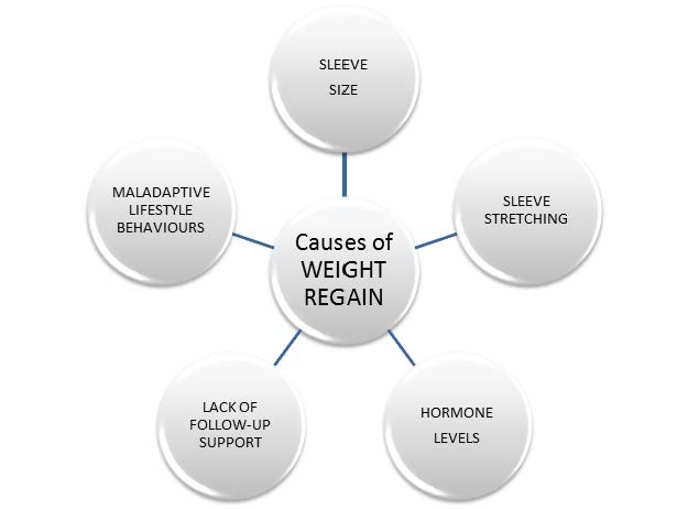 What do we know about weight regain following the sleeve gastrectomy weight loss operation?