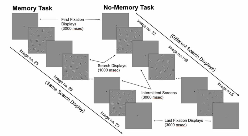 Trial schematics for the two experimental conditions. Both conditions used typical visual search displays but interrupted the search process by presenting intermittent screens for unbiased pupil size measurement. Left: A trial in the visual search (memory) condition with the same search display presented during the entire trial; Right: A control task (no-memory) trial with a different search display after each intermittent screen