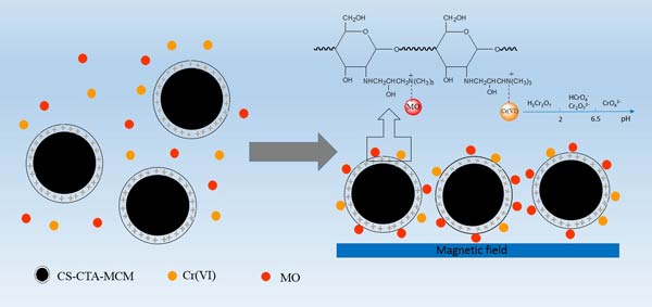 Efficient co-adsorption of multiple types of coexisting pollutants from water using a chitosan-based magnetic composite adsorbent