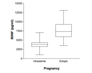 Fig. 2. BDNF levels in blood serum in women who proceeded to have an intrauterine vs. an ectopic pregnancy. BDNF levels are higher in the group of women who had an ectopic pregnancy after their IVF cycle.